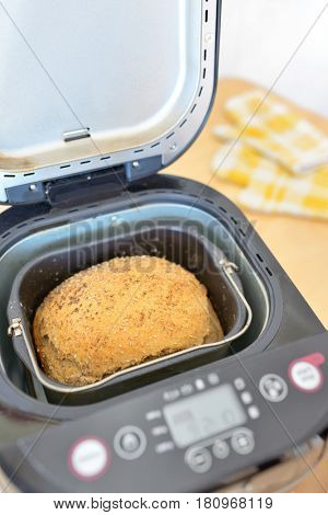 Bread machine and fresh bread at home