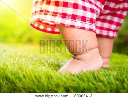 Baby start walking first time on green grass with sunlight backgroundStartup concept