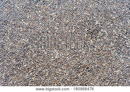 Scattered chia seeds close up: top view