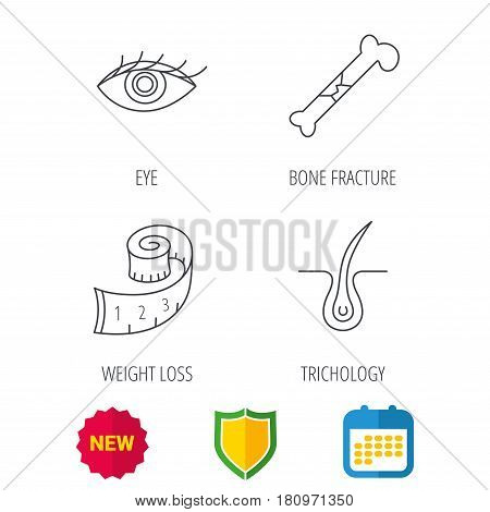Bone fracture, weight loss and trichology icons. Eye linear sign. Shield protection, calendar and new tag web icons. Vector