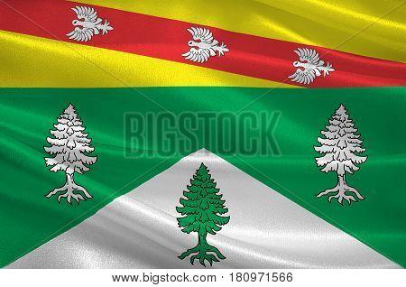 Flag of Vosges is an eastern department of France. 3d illustration