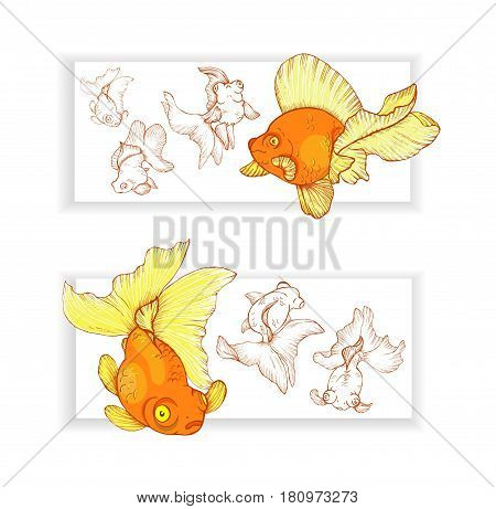 Two horizontal banners with goldfishes vector illustration