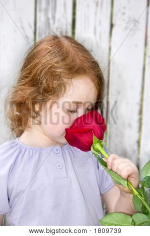 Smelling A Rose