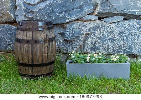 Vintage Oak Barrel On The Lawn Beside A Pot Of Daisy Flowers With Natural Stone Wall As Background