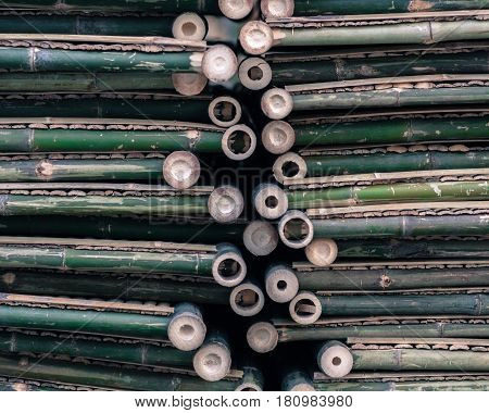 aged green bamboo pipes texture abstract design