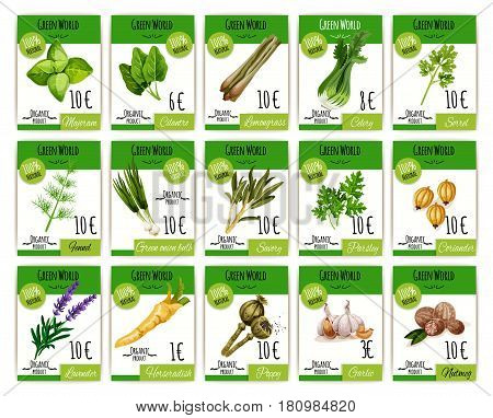 Herbs and spices vector price cards or tags. Shop or store labels for marjoram, cilantro and celery sorrel. Seasonings fennel or savory parsley and green onion or horseradish, lavender and garlic