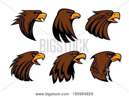 Eagle or hawk vector mascot for sport team badge. Symbol of predatory falcon bird head with open beak. Heraldic isolated icons set for army or military shield and security company