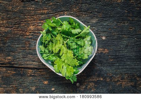 Coriander leaves fresh green cilantro on wooden background Food herbal aroma ingredient on dark wood.