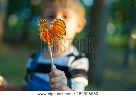 Lollipop on a stick with a boy in his hand. Caramel sweetness in the form of a cockerel. Walk in the park in the summer.