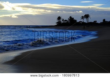 Ocean Waves Island Sky and Clouds Palm Trees