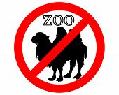 Detailed and colorful illustration of batrian camel in zoo prohibited poster