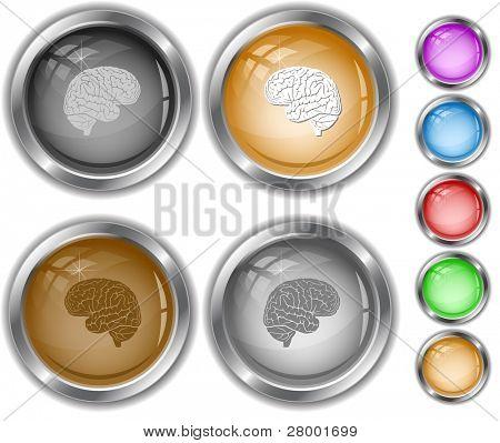 Brain. Raster internet buttons. Vector version is in portfolio.