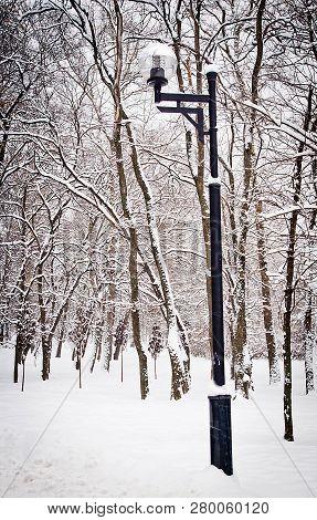 Street Lamp In The City Park In Winter