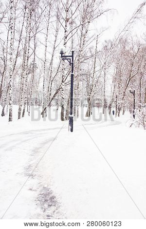 Street Lamp And Trail In The Park In Winter