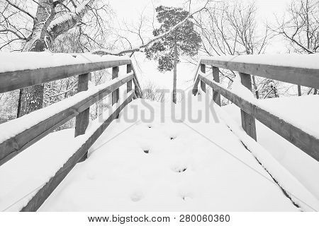 Staircase Under Snow In The Park In Winter Black And White