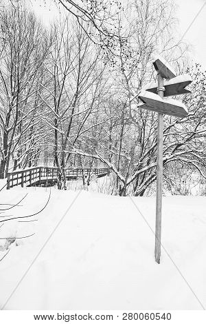 Signpost And Trees In Winter Black And White