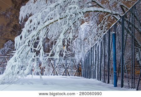 Playground And Trees In Snow In The Evening