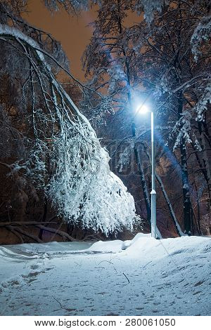 Street Lamp And Trail In The Snow In Park