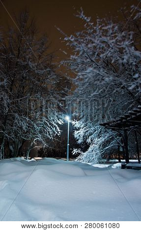 Street Lamp, Trees And Snowdrifts In The Winter Park In The Evening