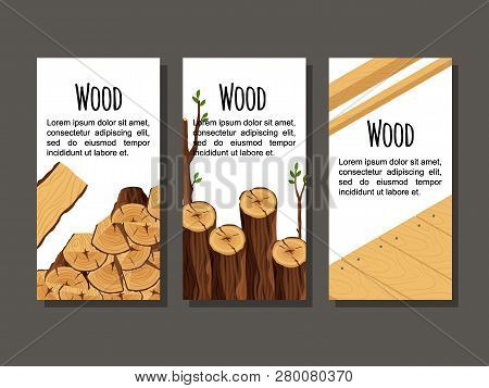 Set Of Vertical Banner Firewood Materials For Lumber Industry. Collection Of Flyers Wood Logs Stubs