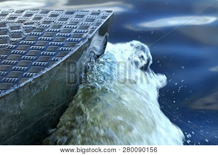 Closeup Of Boat Cutting Through Water