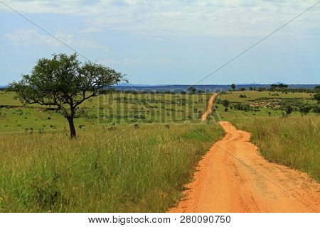 A Dirt Road Through Murchison Falls National Park, Uganda, Over Looking A Green Valley.