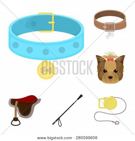 Isolated Object Of Pet And Accessories Symbol. Set Of Pet And Shop Stock Symbol For Web.