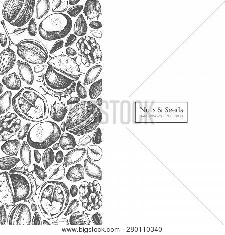 Nuts Seeds Card 2