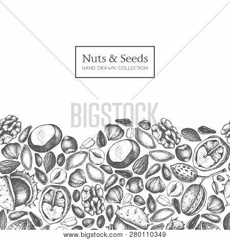 Nuts Seeds Card 3