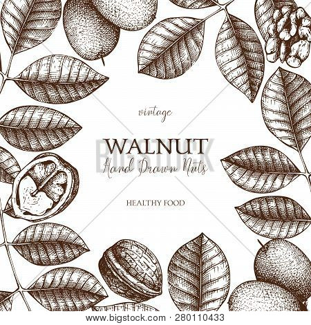 Walnut Card 2