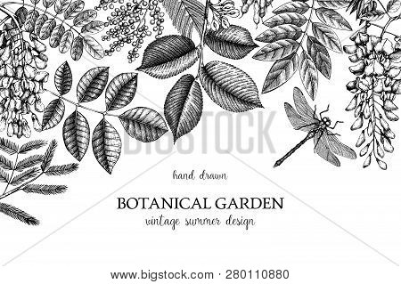 Botanical Design 1