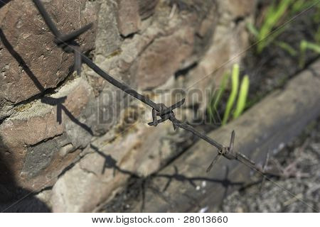 barbed wire and  brick wall poster