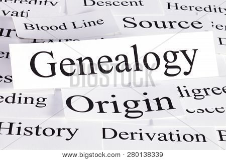 A Conceptual Look At Genealogy, Blood Line, Origins, Source, And History