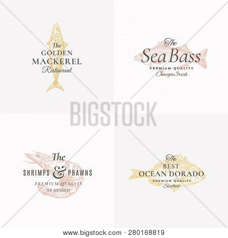 Premium Fish And Seafood Abstract Vector Signs, Symbols Or Logo Templates Set. Elegant Hand Drawn Sh