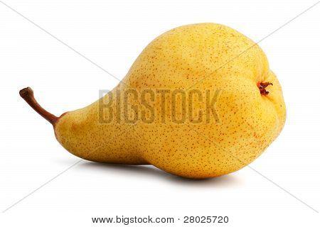 Pretty Juicy Ripe Yellow Pear