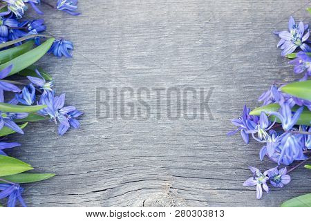 Bouquet Of Flowers On Wooden Background. Bouquet Of Flowers With A Place Under The Inscription. Snow