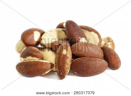 Brazil Nut. Bertholletia, Of The Family Lecythidaceae. High-calorie Nut. Isolated On White Backgroun