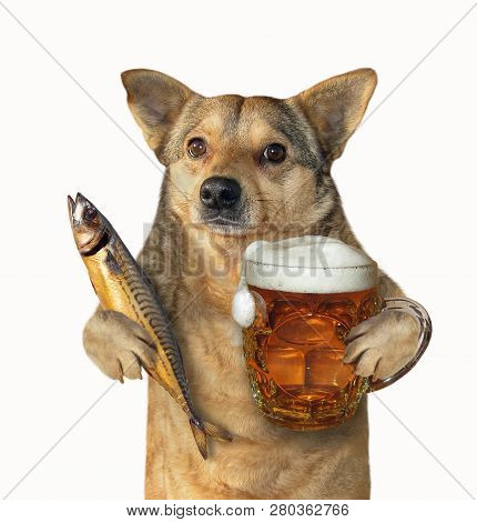 The mutt dog is holding a glass of beer and smoked mackerel. Isolated. White background. poster