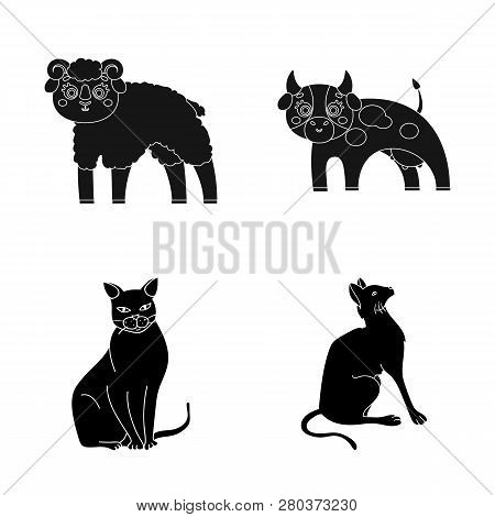 Isolated Object Of Animal And Habitat Sign. Set Of Animal And Farm Stock Symbol For Web.