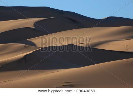 "Orange Dawn on a magnificent sandy dune   ""Eureka"""