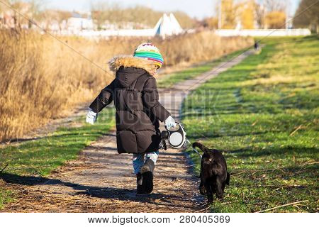Small Child Is Walking A Labrador Retriever Puppy. Kid And Labrador Retriever Dog For A Walk. Best F