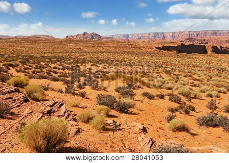 Walking around the famous Horseshoe Canyon in the U.S.. Trampled sandy slope, overgrown with bushes dry
