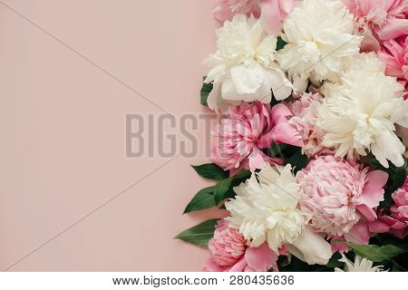 Stylish Peonies Flat Lay. Pink And White Peonies On Pastel Pink Paper With Space For Text. Hello Spr