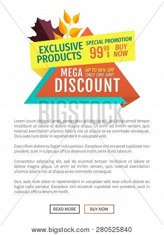 Exclusive Product Mega Discount Banner With Leaves. Autumn Proposal Offer Shops With Reduced Costs P