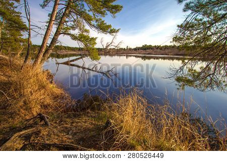 River Wilderness Landscape. Tahquamenon River Surrounded By A Beautiful Boreal Forest And Wetland Ec