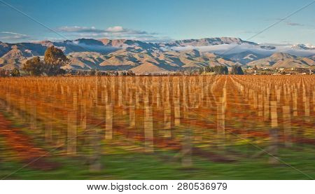 Magical Countryside Landscape Surrounding Town Of Blenheim