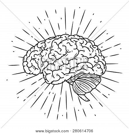 Brain. Hand Drawn Vector Illustration With Brain And Divergent Rays. Used For Poster, Banner, Web, T