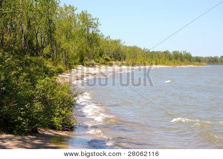 Lake Erie beach and forest