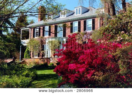 Old Mansion In Spring