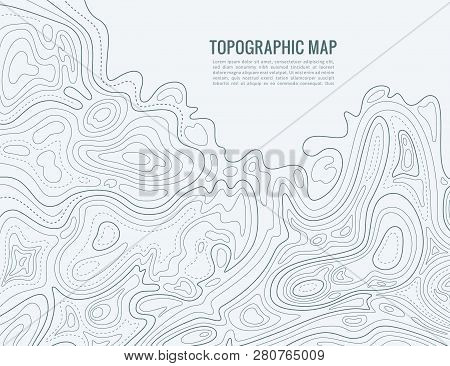 Contour Line Map. Elevation Contouring Outline Cartography Texture. Topographical Relief Map Vector